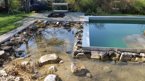 Schwimmteich (3)