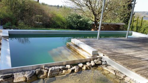 Schwimmteich (4)